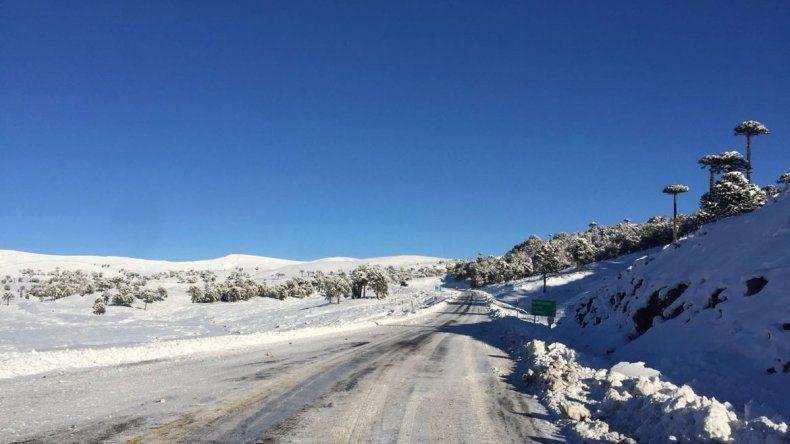 En Pino Hachado  la nieve dio respiro y abrieron el paso