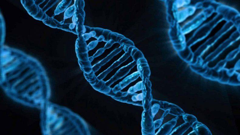 El gen APOE es clave en el desarrollo del alzhéimer