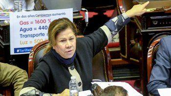 La diputada Graciela Ocaña durante la sesión de la cámara baja para debatir el tarifazo, que fue levantada tras no obtener quórum.