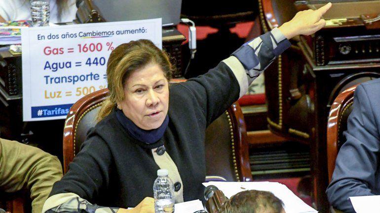 La diputada Graciela Ocaña durante la sesión de la cámara baja para debatir el tarifazo