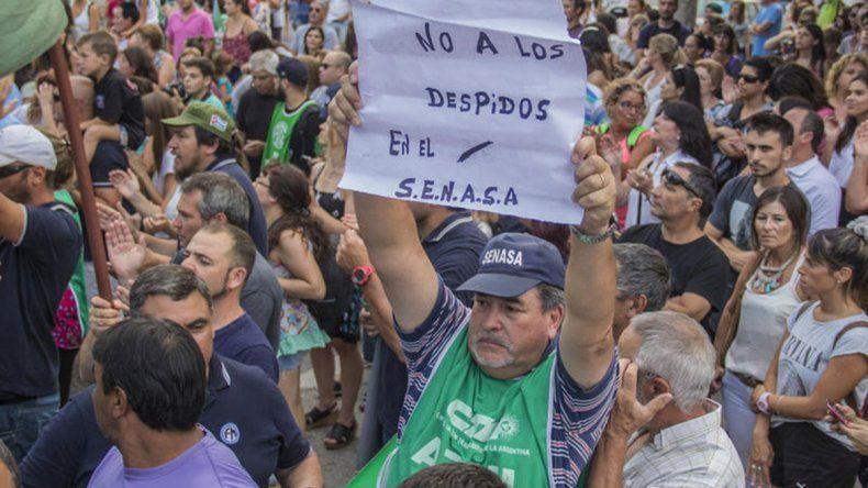 ATE Senasa afirma que bajaron varios programas sanitarios