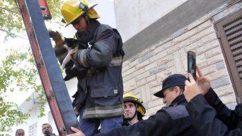 los bomberos rescataron una gatita que no podia bajar de un arbol
