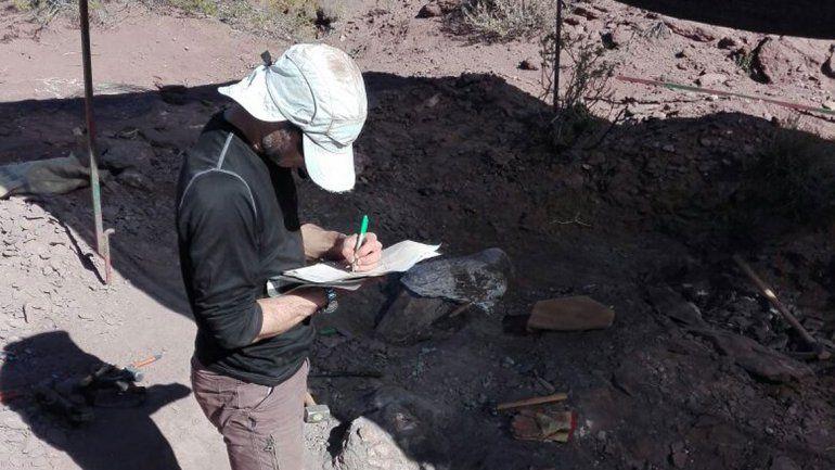En Neuquén se encuentran restos de al menos tres dinos por mes