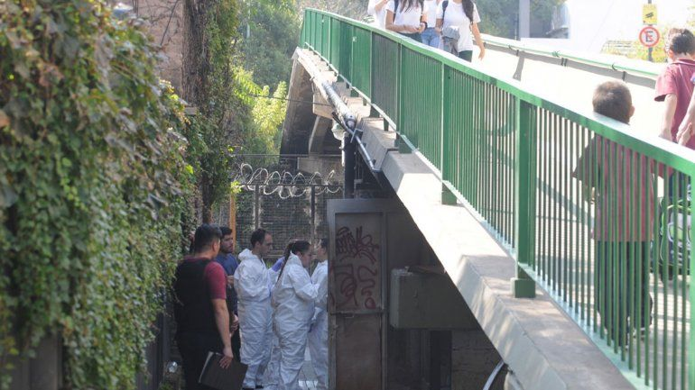 Violaron a una nena de 13 años bajo un puente