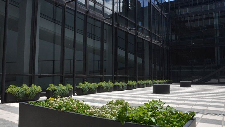Los edificios sustentables se abren paso en Neuquén