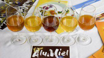 Con la segunda  fiesta de la miel se endulza Aluminé