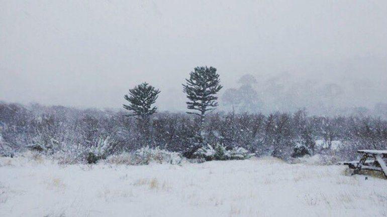 Emitieron un alerta por nevadas, viento y lluvias intensas