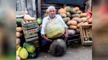 la historia del productor de plottier que cosecho un zapallo de 45 kilos