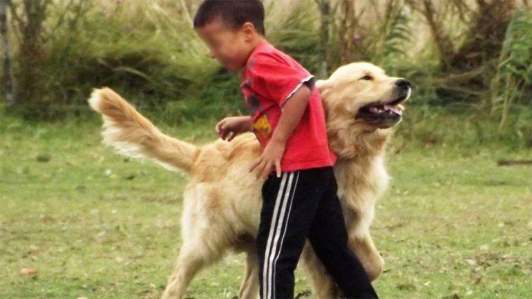 El perro fue robado hace 23 días.