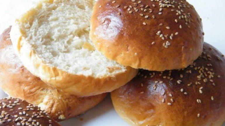 Encuentran ratas entre los panes de una famosa hamburguesería