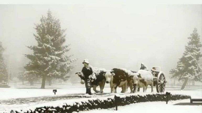 Mirá quién posteó esta tradicional imagen de Zapala bajo nieve