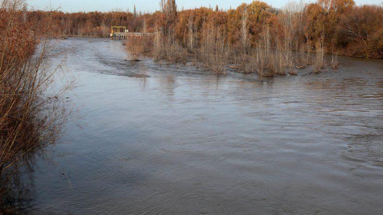 En el río Neuquén el agua baja turbia previo a la crecida