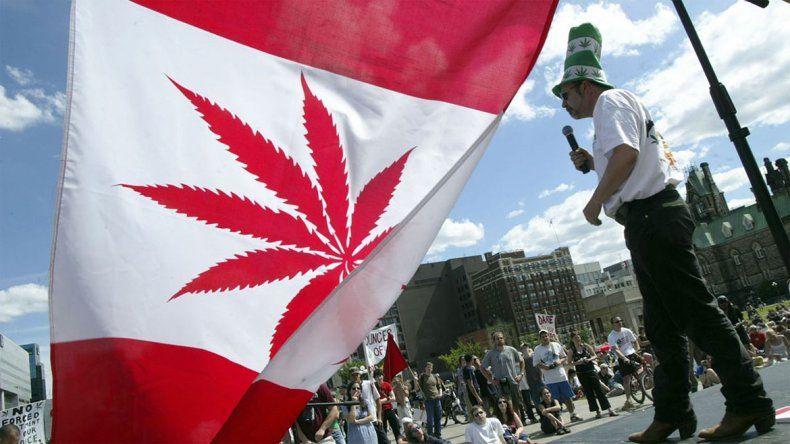 Los canadienses podrán cultivar hasta cuatro plantas en sus casas.