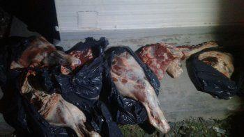 Decomisan 70 kilos de carne que llevaba en una Pick Up