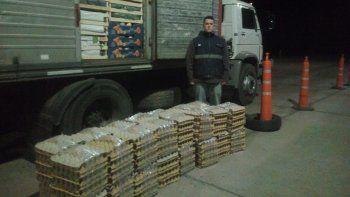Sigue el tráfico de huevos: 450 docenas entre la verdura