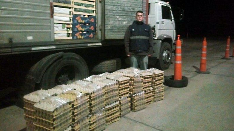 En lo que va del año ya se secuestraron 3850 docenas de huevos.
