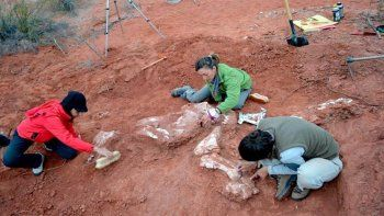 descubrieron el dinosaurio gigante mas antiguo