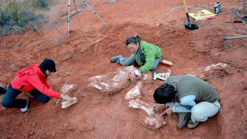 Descubrieron el dinosaurio gigante más antiguo en San Juan