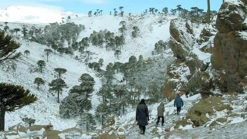 Los paisajes invernales más espectaculares de la región