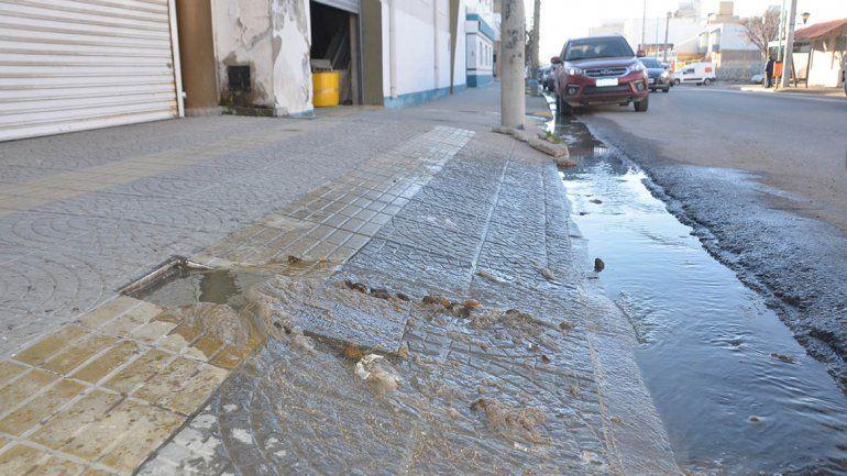 Un río de caca corre por la calle San Martín al 1500 desde hace cuatro años