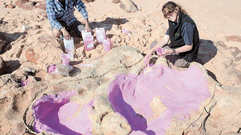 Los especialistas esperan hallar más tesoros en Wyoming.