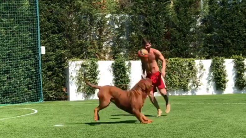 Messi se divirtió jugando al fútbol con su perro