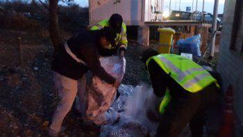Decomisaron 264 kilos de carne de cuatro vehículos