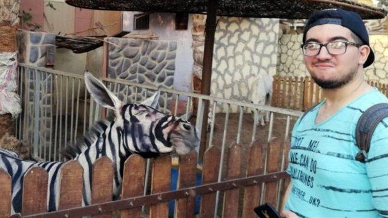 Papelón: las burras-cebras fueron pintadas con colores naturales.
