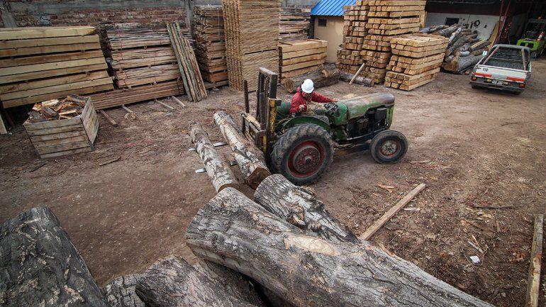 Trabajo noble y sacrificado. Los madereros componen una gran familia en toda la provincia.