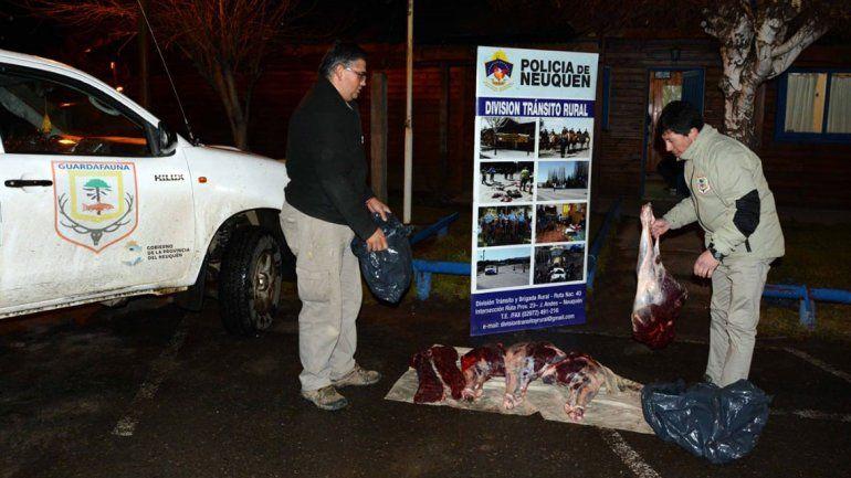 Encuentran a un cazador furtivo con cuatro animales faenados de manera clandestina en el auto