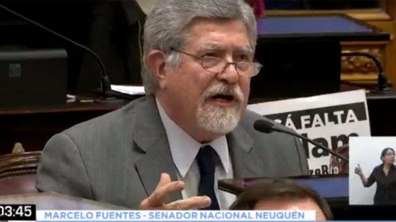 Las mejores frases de los senadores neuquinos sobre el aborto