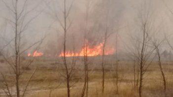 china muerta: bomberos sofocan un voraz incendio de pastizales