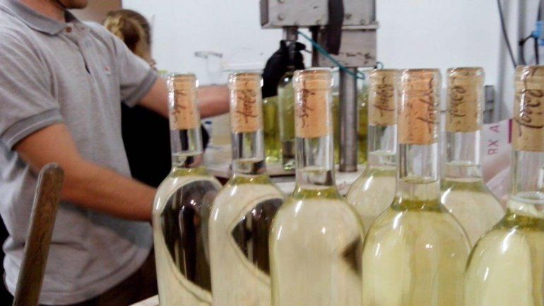 Se puede exportar vinos mediante una plataforma online