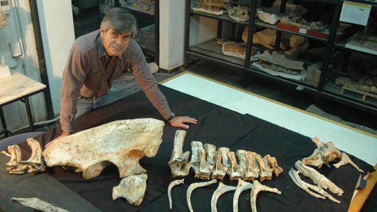 Los dinosaurios también tendrán su museo en Añelo