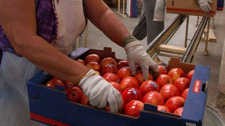 Peras y manzanas sufrirán un recorte de $450 millones