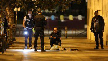 Las autoridades investigan el caso para determinar si se trató de un atentado terrorista o si fue un brote psicótico del atacante.