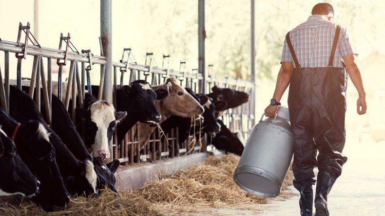 La lechería está en crisis. En lo que va de 2018