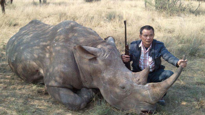 Al menos cinco bandas fueron identificadas durante los últimos años. Había un vacío legal que les permitía cazar y traficar las piezas de los animales.