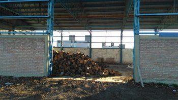 Zapala: roban 6 mil kilos de leña del Operativo Invierno