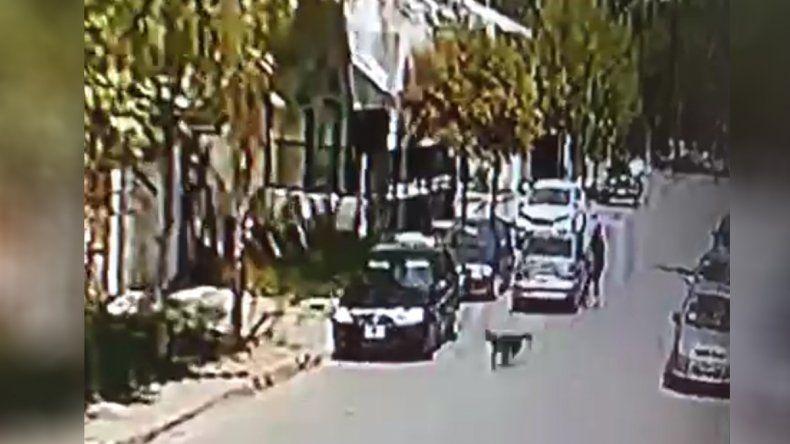 Inseguridad a plena luz del día: le arrebataron el bolso cuando estaba a punto de entrar a su casa