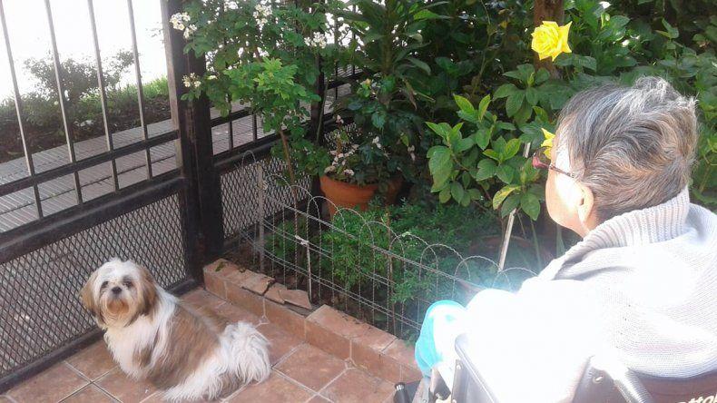 Desesperada búsqueda de Coco, el perrito que sirve como terapia para una abuela