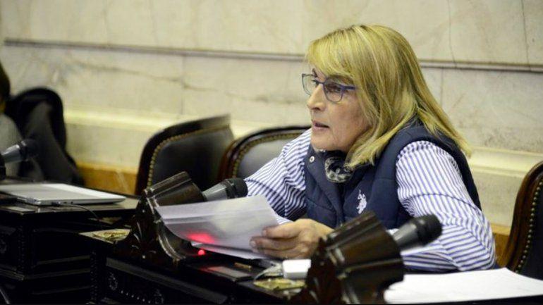 El MPN no definió su voto a la ley de presupuesto 2019