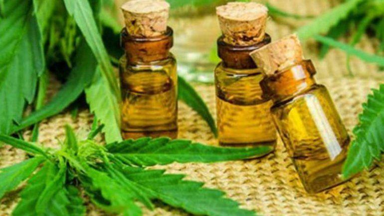 Inició el primer ensayo clínico con cannabis medicinal