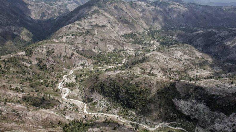 Alerta ecológica en Haití: ya casi no le quedan bosques