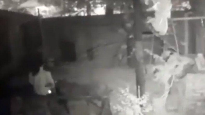 Quiso robar una bici del patio de una casa y quedó filmado
