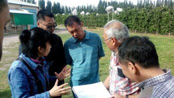 el protocolo para exportar cerezas a china es superador