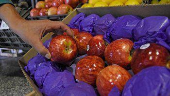 la manzana le sigue dando poco redito al que la produce