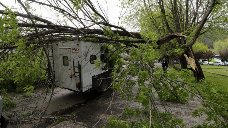 En las ciudades cordilleranas, el viento tiró árboles y voló el techo de una casilla