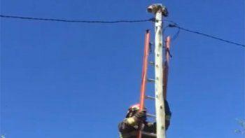 bombero rescata a una gatita en altos del limay