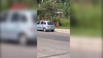 indignacion: llevaba a un perro muerto atado al auto